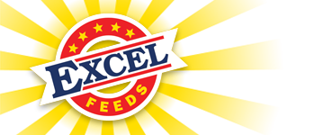 Excel Feeds